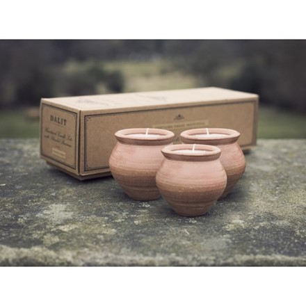 pack of 3 Deepti Pot Candles - Lavender - Dalit